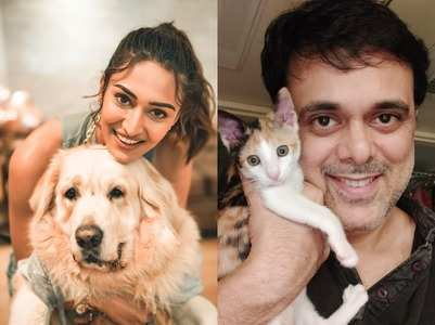 TV Celebs reveal their pets' unusual habits