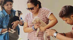 Sreelekha Mitra on her love for stray dogs