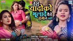 Check Out Latest Hindi Song Music Video - 'Teri Yaado Ko Bhulade Vaise Hum Toh Nahi' Sung By Shital Thakor