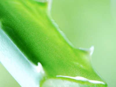 How to make aloe vera gel at home