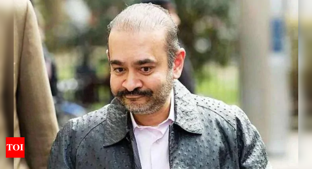 PNB scam: UK home secretary approves extradition of Nirav Modi to India - Times of India