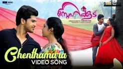 Watch Latest Malayalam Music Video Song 'Chenthamara' From Movie 'Snehakoodu' Sung By Madhu balakrishnan And Sithara