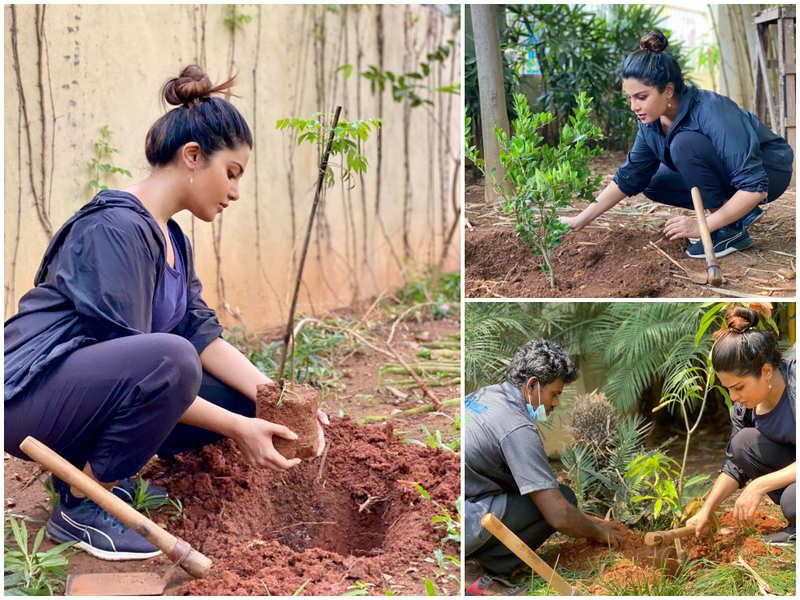 Aathmika plants saplings in remembrance of actor Vivek