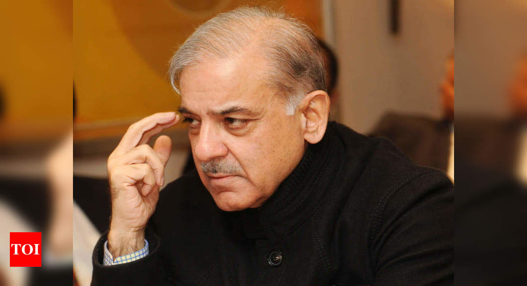PML-N leader Shahbaz Sharif walks free from jail – Times of India