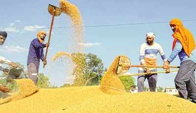 80cr to get 5 kg of grain free under NFSA for the next 2 months | India News