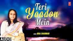 Watch New Hindi Song Music Video - 'Teri Yaadon Mein' Sung By Braj Sharwari