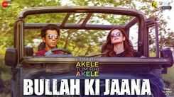 Hum Bhi Akele Tum Bhi Akele | Song - Bullah Ki Jaana