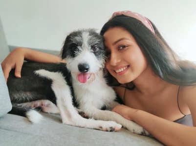 Riya Bhattacharje spends lockdown with pets