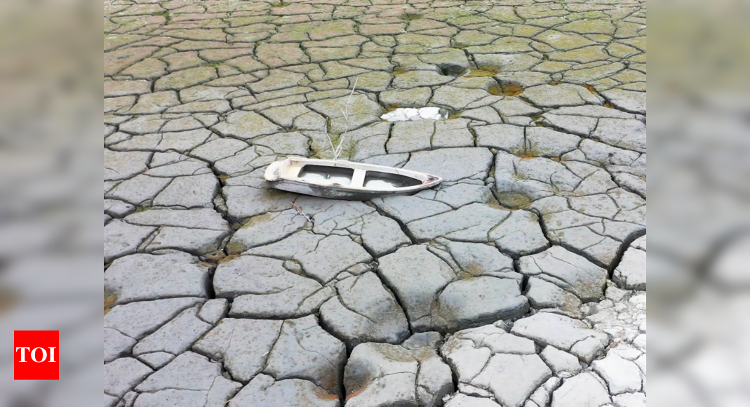 Taiwan rations water, drills extra wells amid record drought
