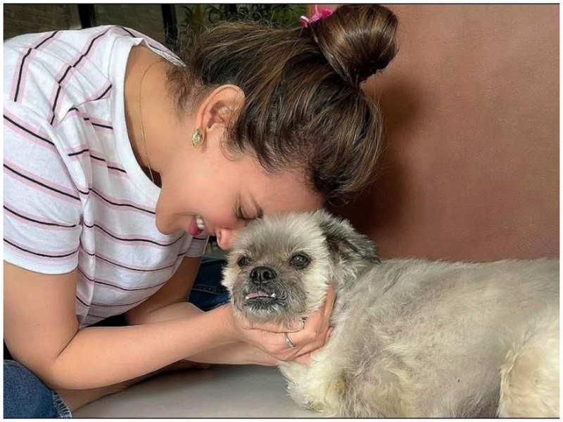 Esha Deol mourns the demise of her pet dog 'Gordita'
