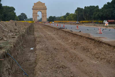 PIL against Central Vista a disguise to stall project: Centro a HC | India News