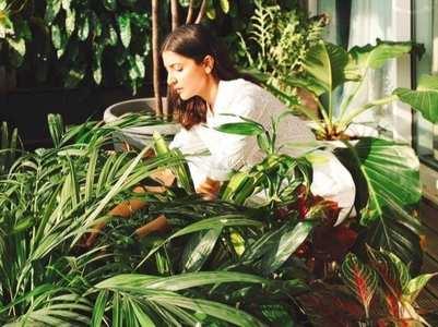 B-Town stars who love gardening