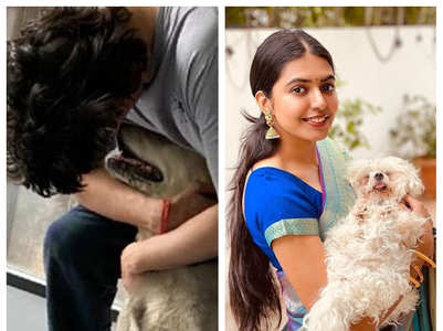 Tollywood actors and their furry friends
