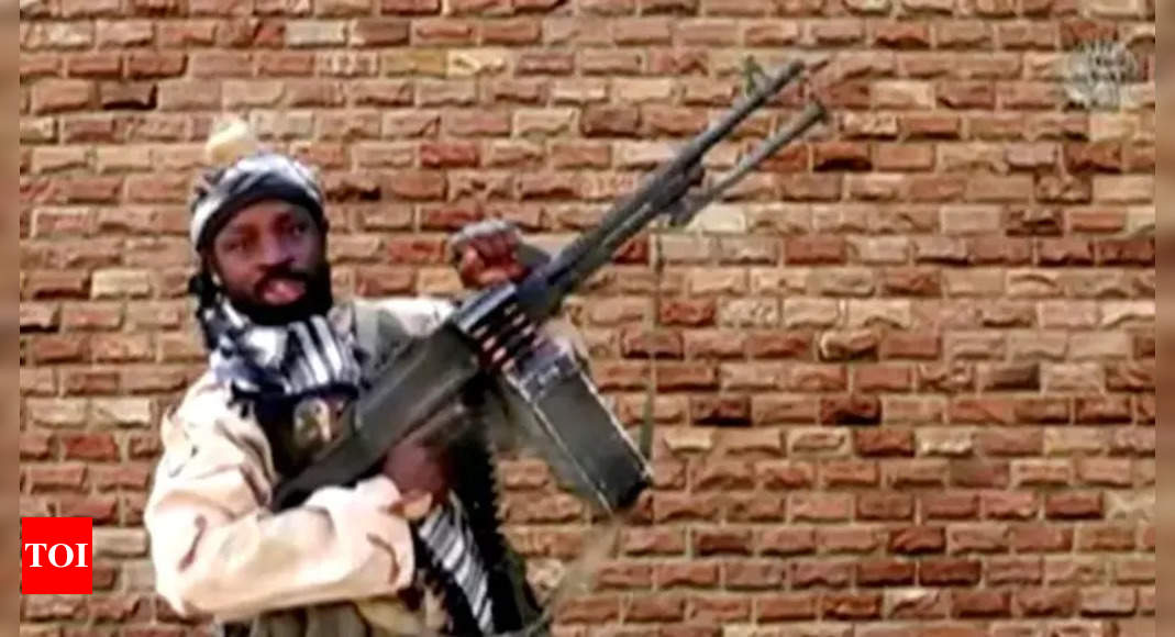 Boko Haram militants kill 8 in southeastern Niger, says defence ministry – Times of India