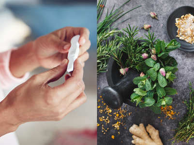 5 herbs that can help you get pregnant