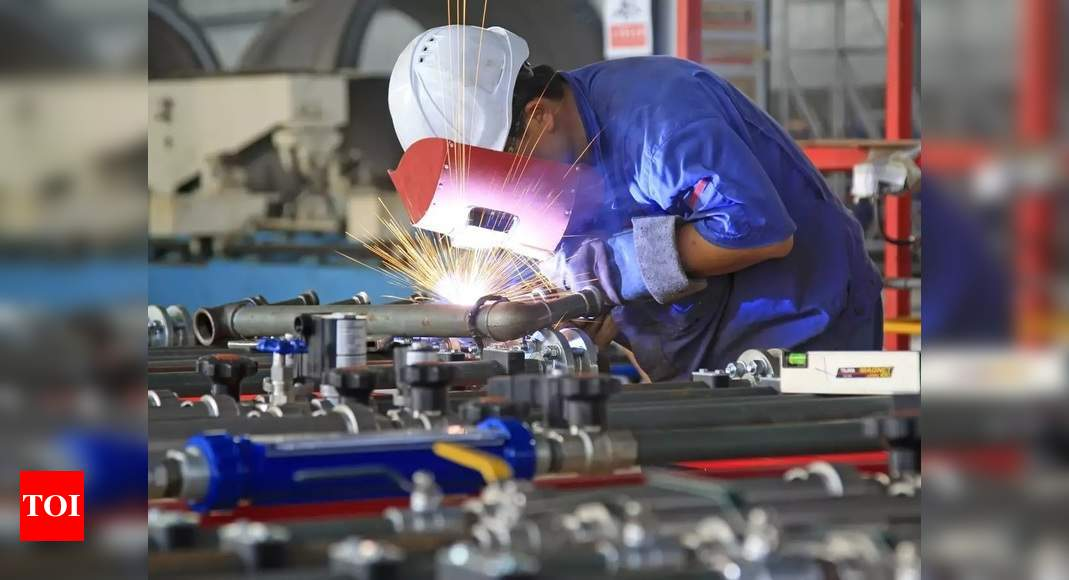PMI: India's factory activity growth slipped in May as ...