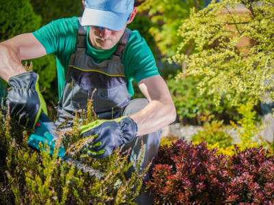 10 gardening mistakes you didn't know you were making