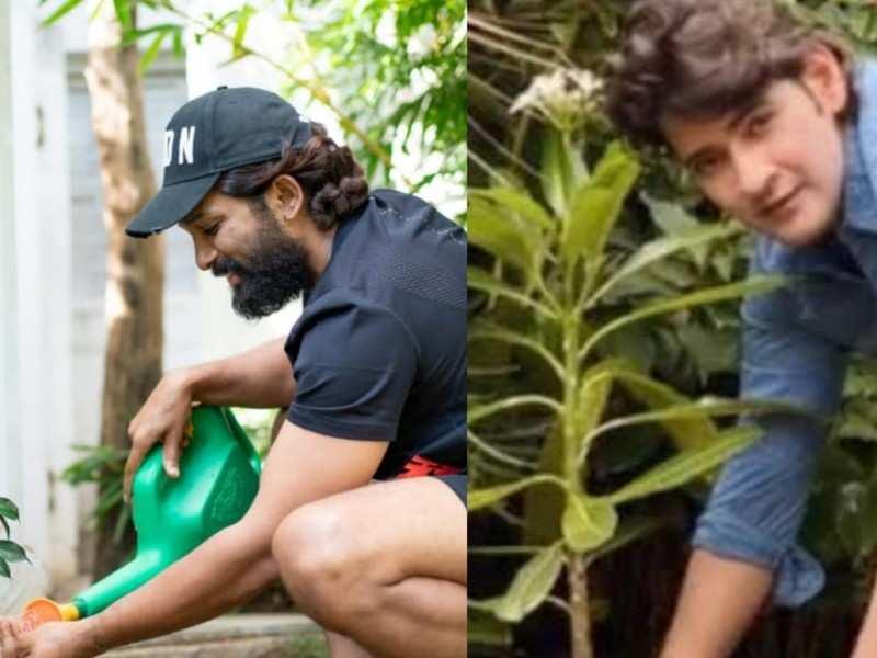 World Environment Day: Mahesh Babu and Allu Arjun rally for a greener planet