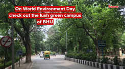 On World Environment Day check out the lush green campus of BHU