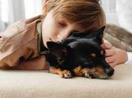 Pets help your child sleep better at night!