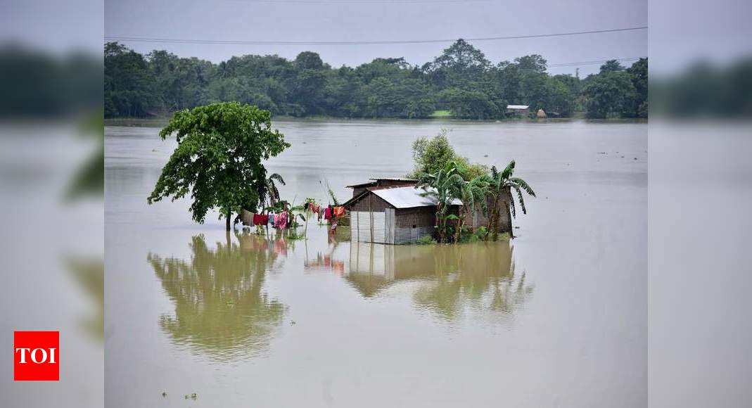 Floods affect 36,000 people in four districts of Assam | Guwahati News – Times of India