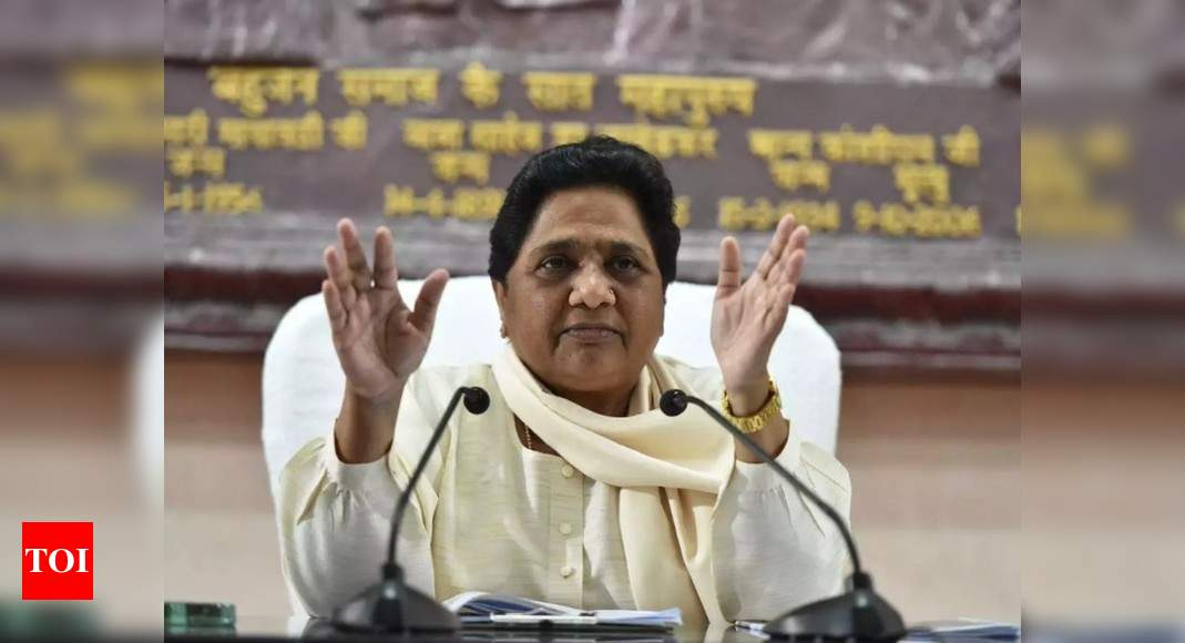 Mayawati seeks to reorient BSP's image, describes it as 'sarv samaj' party