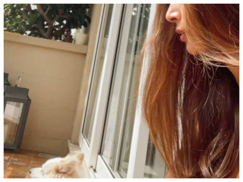 Malaika Arora enjoys a sunbath with her furry friend; take a look!