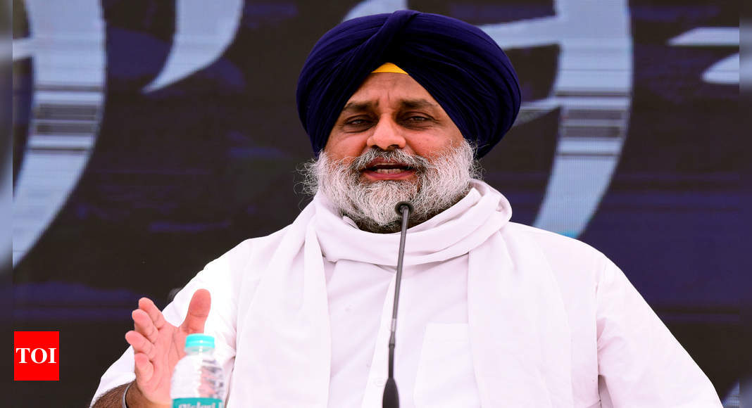 If survey is done, Punjab CM will emerge as most hated man, alleges SAD