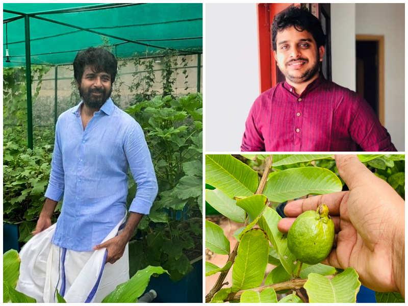 After Sivakarthikeyan, director Ravikumar reveals his terrace garden