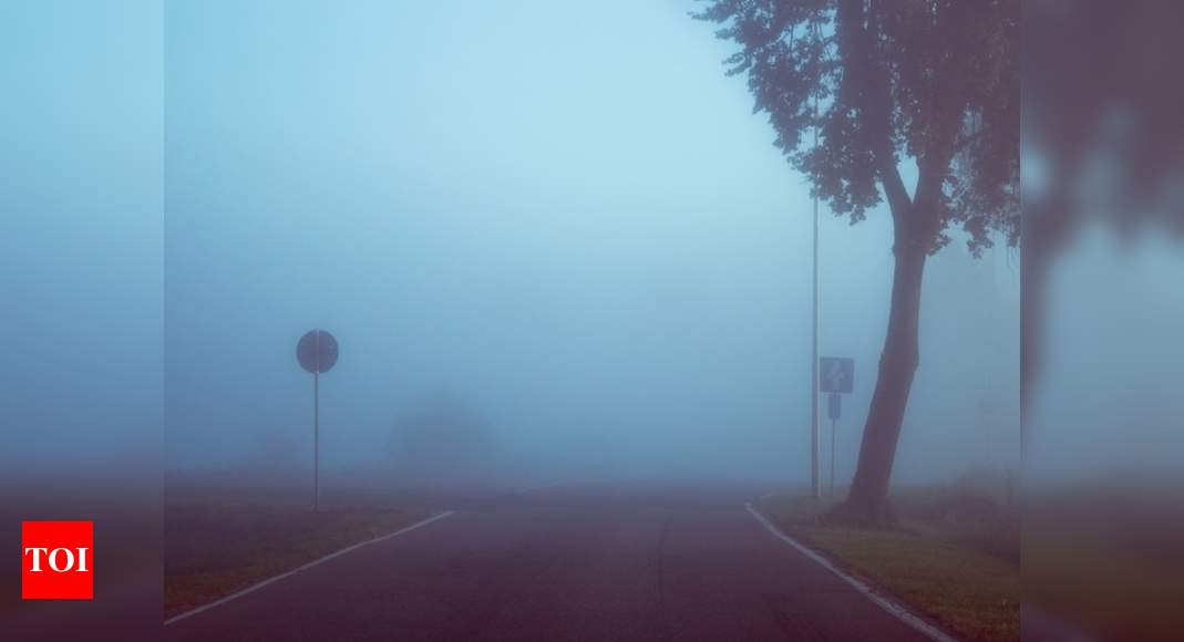Indo-French team's technique improves way of imaging through fog | India News – Times of India