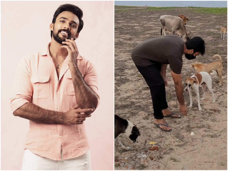 Arav: I'm working towards setting up food dispensers and water bowls for stray dogs