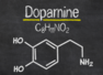 Dopamine: What is it and how does it impact our body?