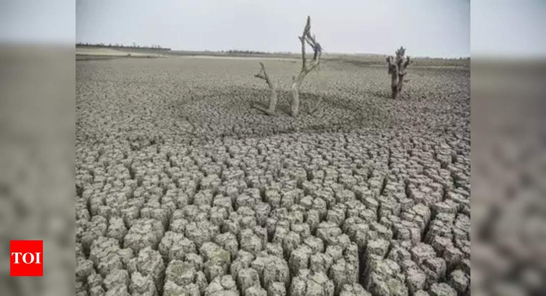 Severe droughts to impact 2-5% of India's GDP: UN report