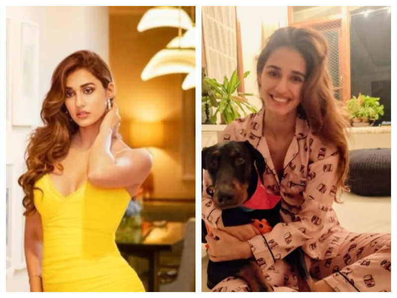 Pictures and videos that will take you inside Disha Patani's chic Mumbai home