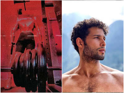 Siddhant Chaturvedi's latest work out pic