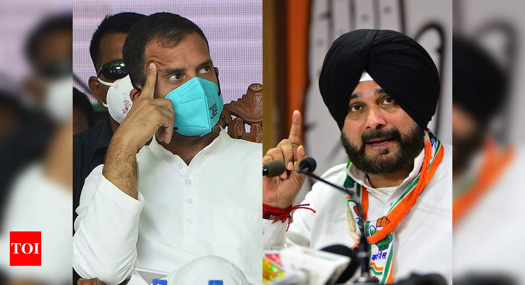 Finally, Navjot Singh Sidhu gets an audience with Rahul Gandhi