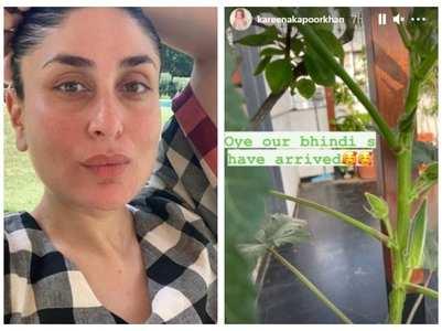 Bebo posts a pic of okra growing in her garden