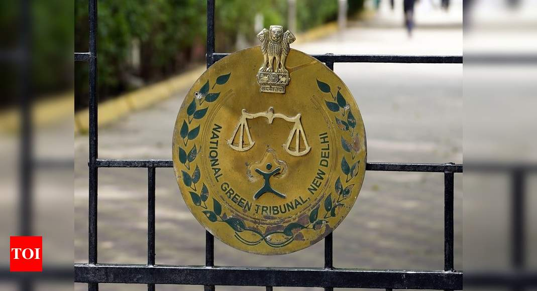 NGT forms fresh committee, seeks report on pollution caused by slaughter houses – Times of India