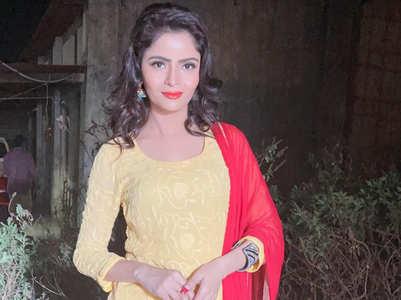 Gehana Vasisth and Raj Kundra's connection