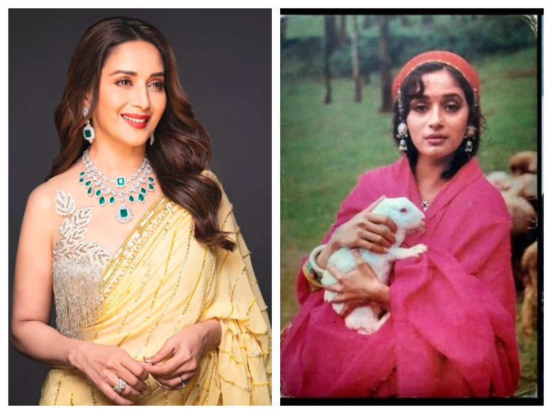 Did you know Madhuri Dixit was once bitten by a rabbit while was shooting for Rishi Kapoor, Sanjay Dutt starrer 'Sahibaan'?