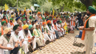 Farmers Protest in Delhi: 'Kisan sansad' near Parliament enters second day    Delhi News - Times of India