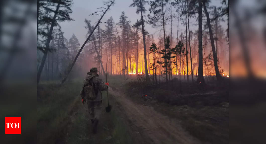 'Our homeland is burning': Volunteers join Siberia wildfire fight – Times of India
