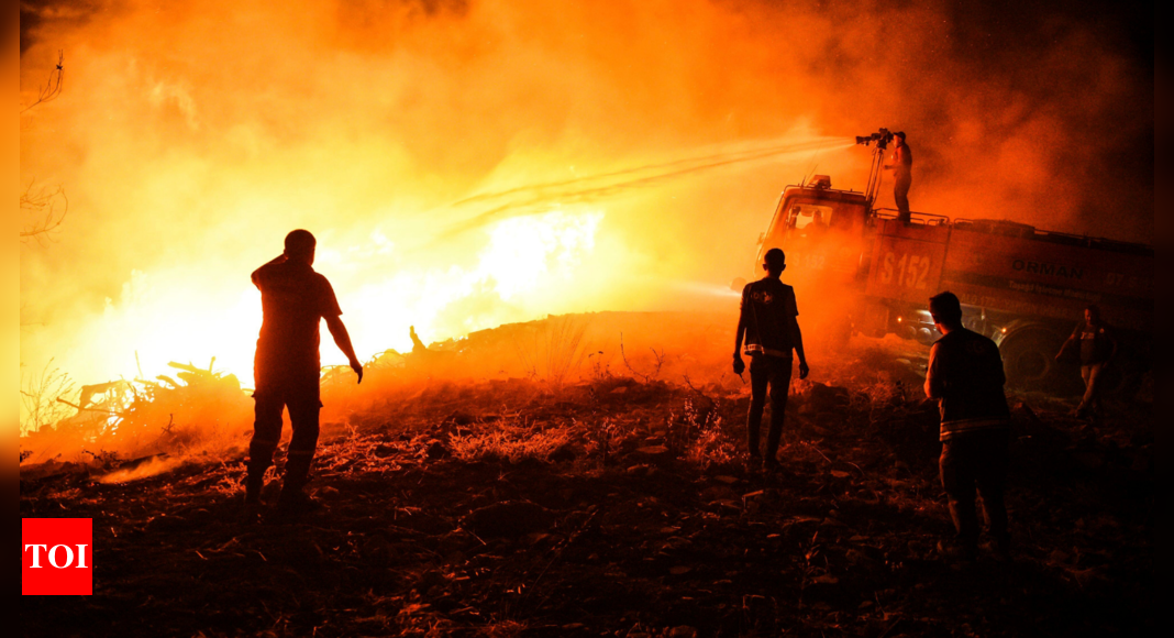 Death toll in wildfires that hit southern Turkey rises to 4