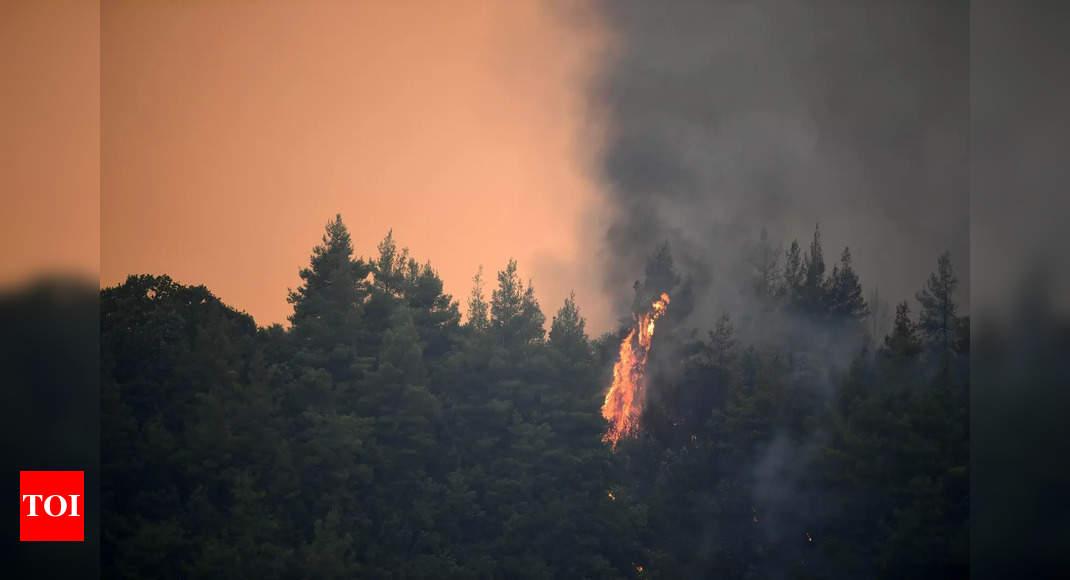 'Unprecedented': Massive forest fire devastates Greek island