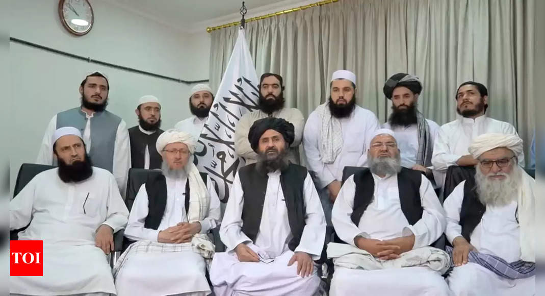 Taliban announce 'general amnesty' for govt officials thumbnail