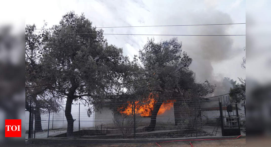 Greece wildfires: Another blaze breaks out on Evia island thumbnail