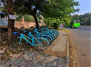 City's bicycle sharing plan shifts to low gear; rentals go down to 20 per cent
