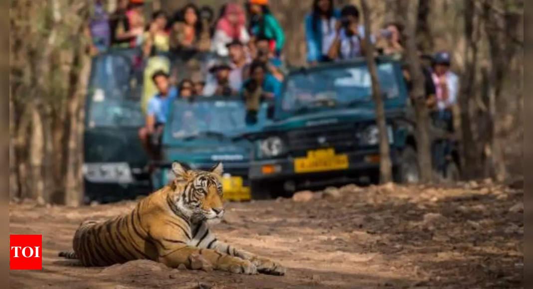Women drivers to break jungle barrier