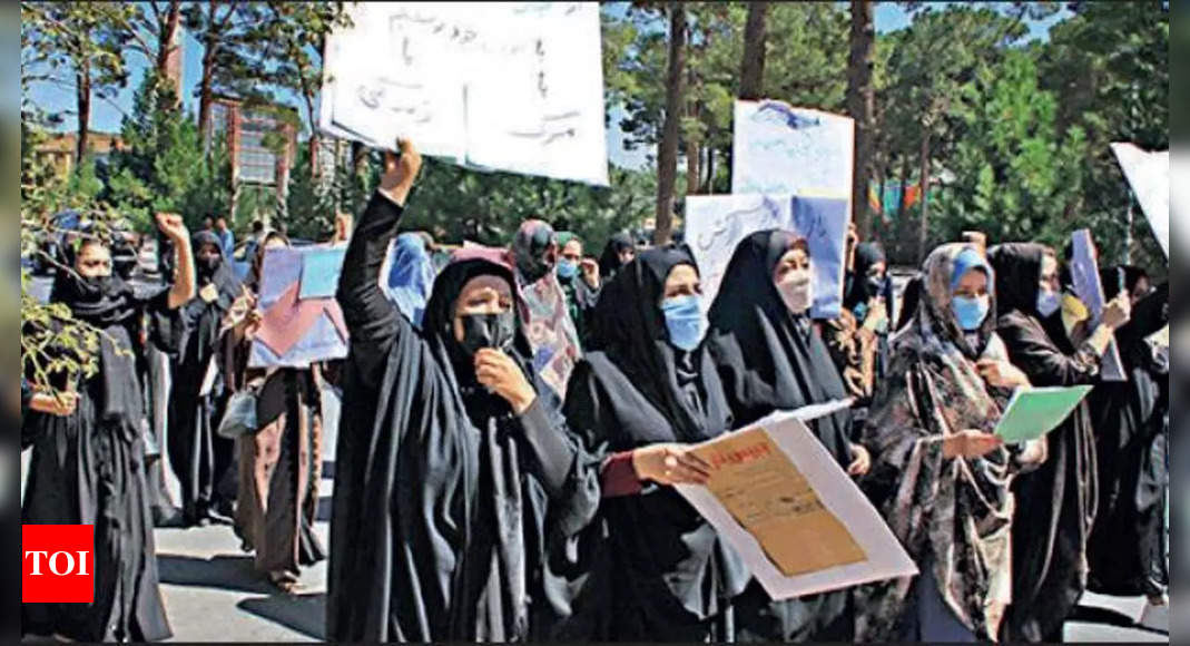 Afghan women rally for rights in Herat