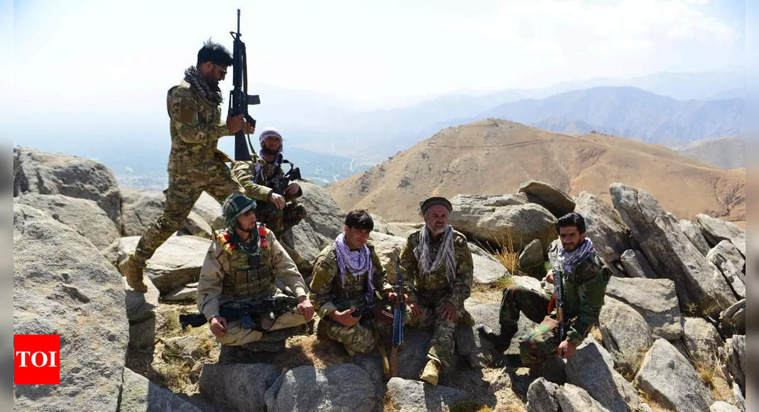 , Afghanistan: Taliban form ties with al-Qaida to fight Panjshir resistance front, The World Live Breaking News Coverage & Updates IN ENGLISH